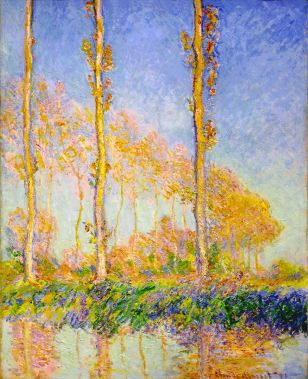 poplars-autumn-pink-effect